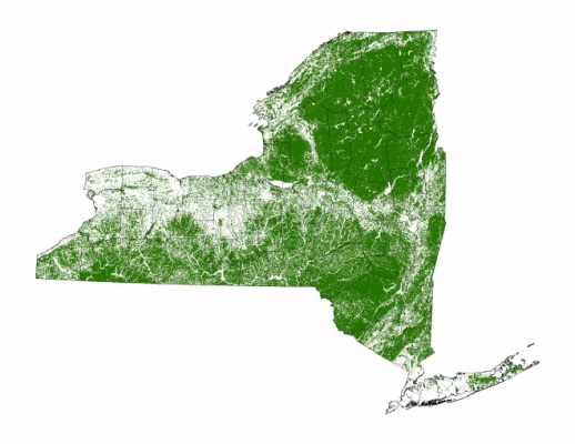Map of forests in New York larger than 5 acres